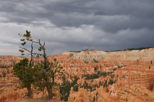 GATHERING CLOUDS, BRYCE CANYON