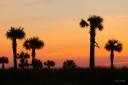 Sunset Silhouette - Kiawah Island