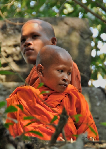 MONKS VISIT ANGKOR WAT