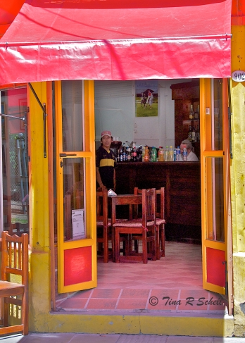 PRIMARY COLOR DOORS BUENOS AIRES, ARGENTINA
