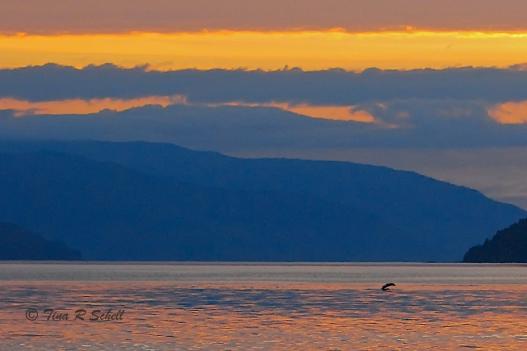 SUNSET, GLACIER BAY, ALASKA