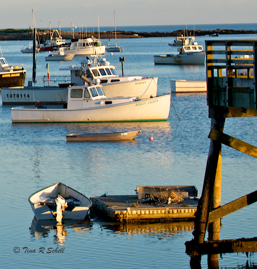 LOBSTER BOATS AT DUSK