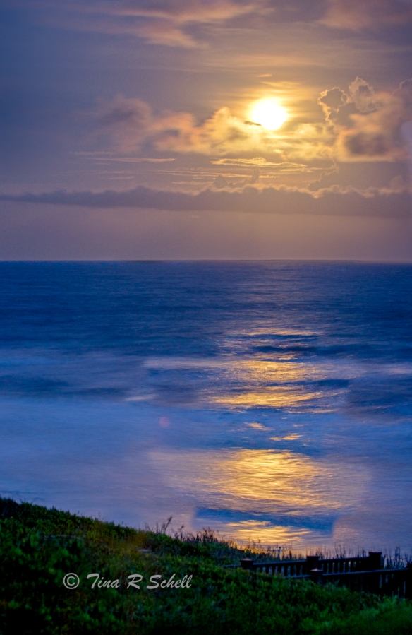 MOONLIGHT, KIAWAH ISLAND
