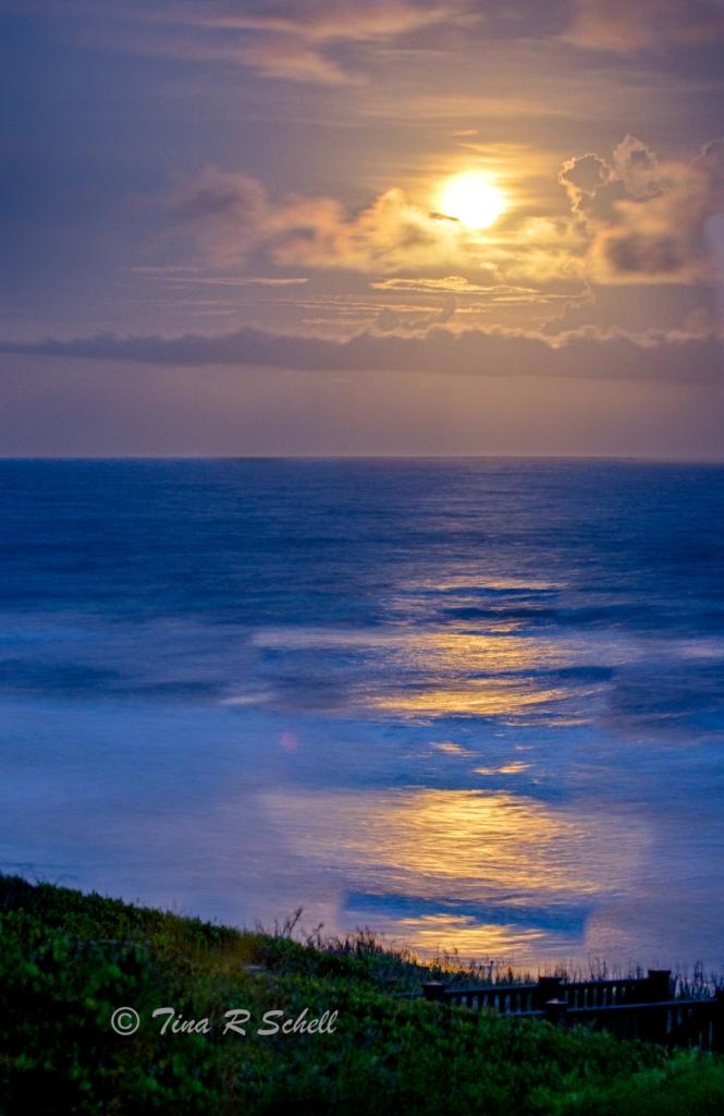 MOONLIGHT, KIAWAH ISLAND