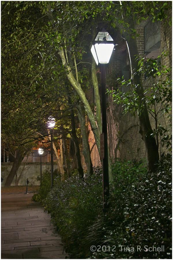 CHARLESTON LAMPLIGHT
