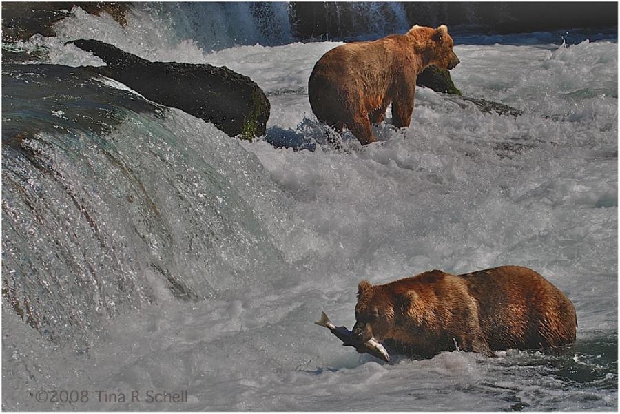 FISHING, ALASKA-STYLE