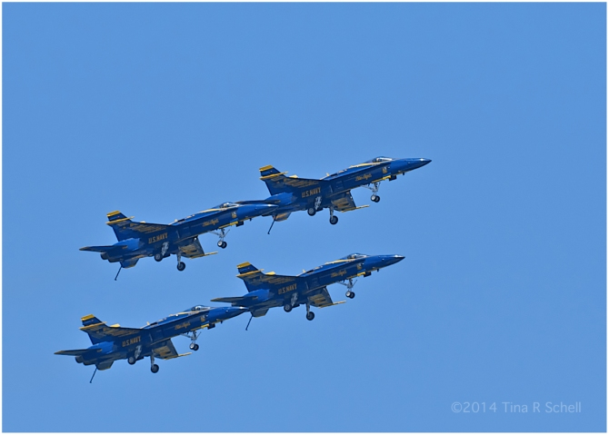 IN FORMATION