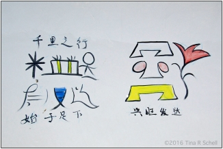 NAXI PICTOGRAMS