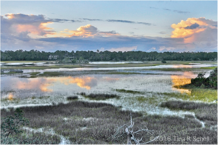HIGH TIDE ON THE MARSH