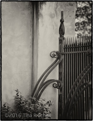 GRACIOUS GATE