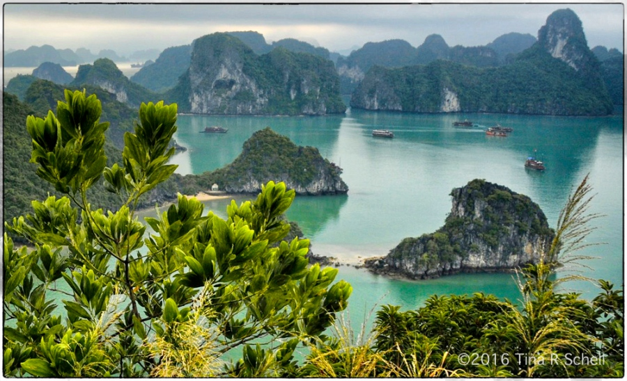 SHIPS, HA LONG BAY