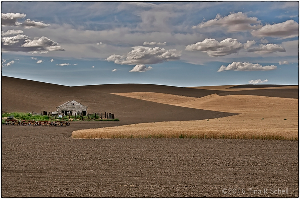PASSING THROUGH THE PALOUSE