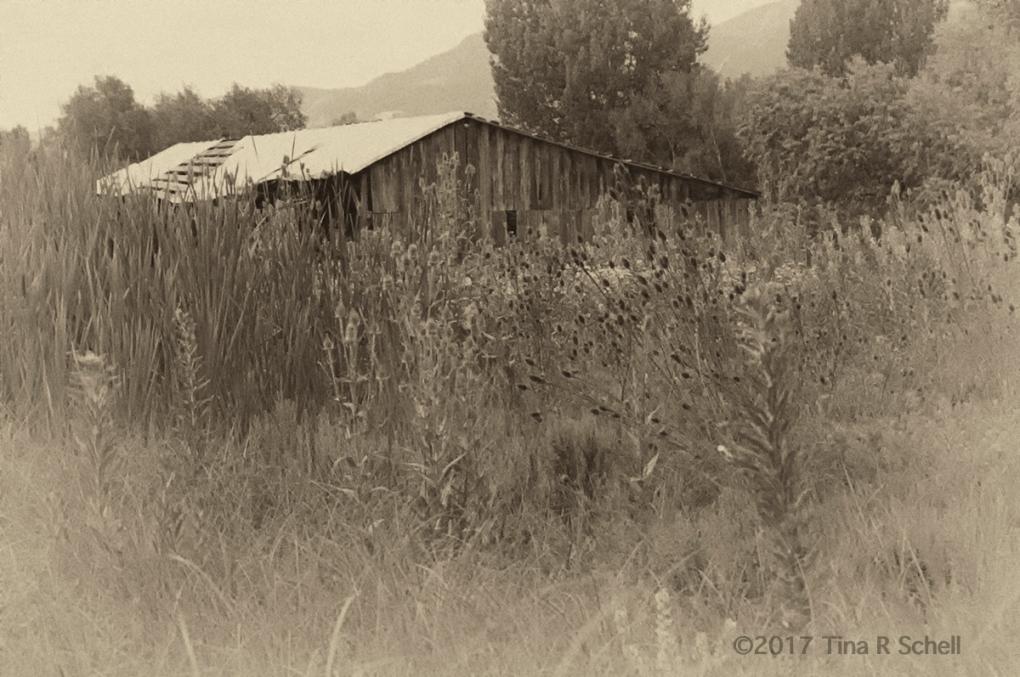 WESTERN WORLD, COLORADO