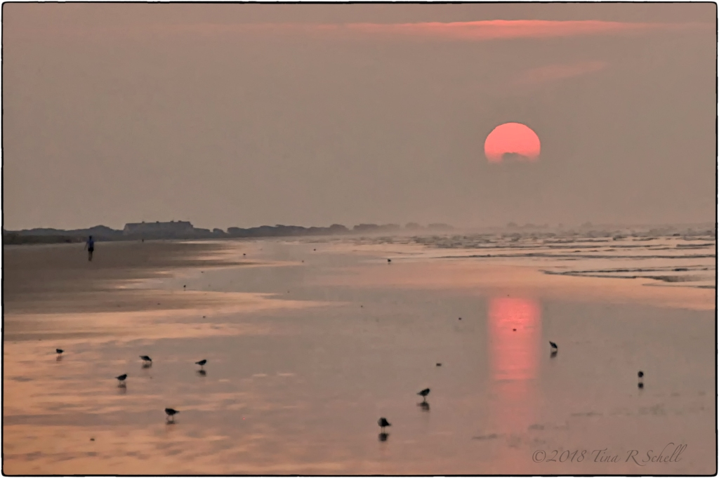 KIAWAH BEACH SUNRISE