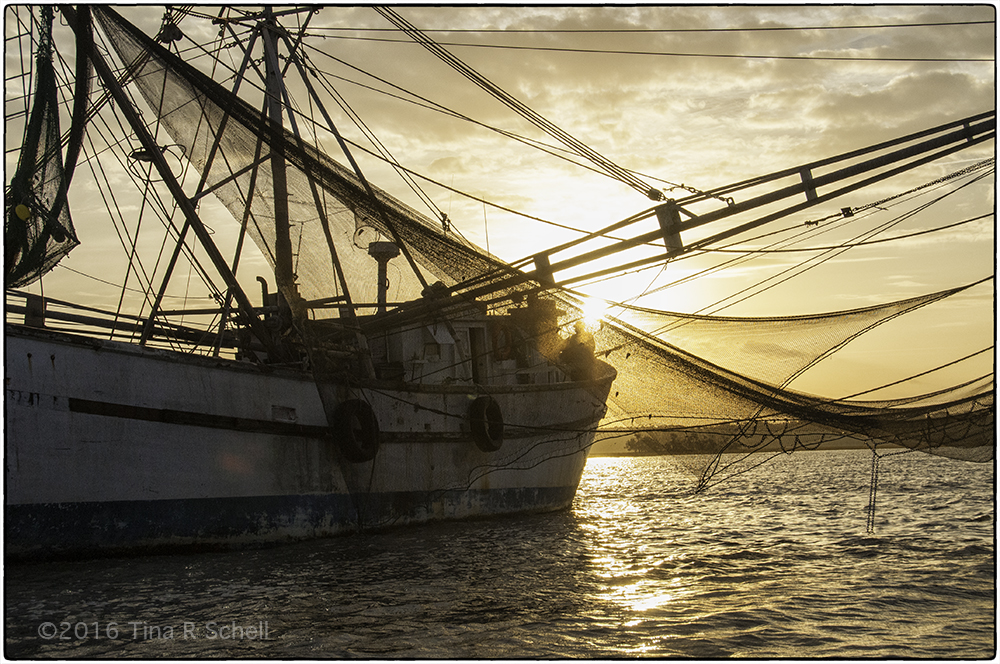 SHRIMPBOAT AT SUNRISE