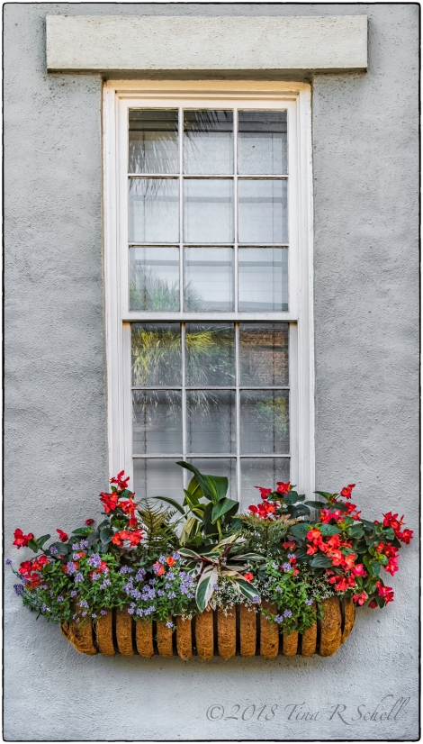 WELCOMING WINDOW