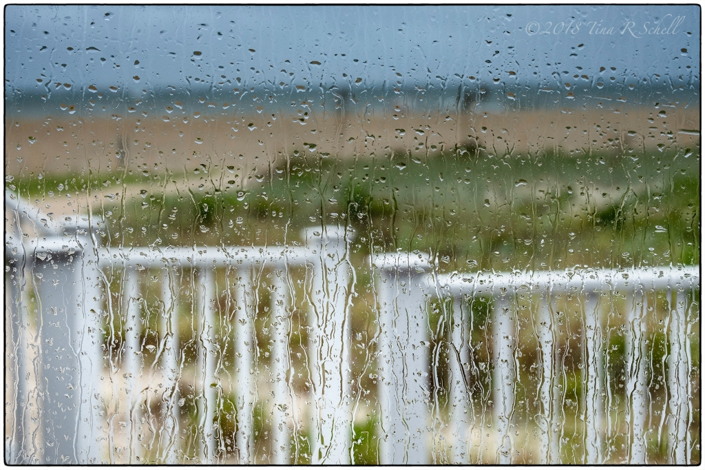 white fence in the rain