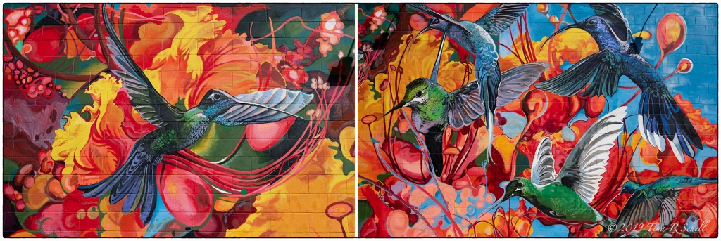 street art, hummingbirds