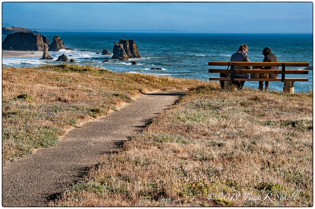 couple on a bench at the ocean