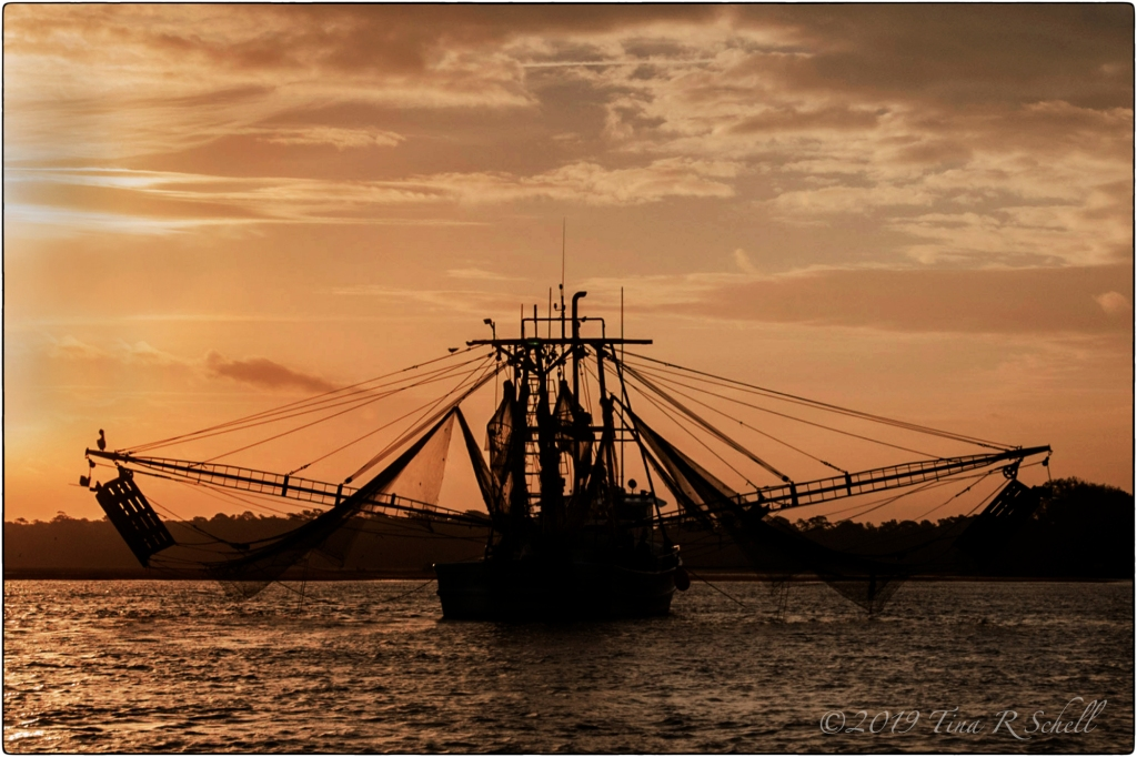 SHRIMPBOAT, DAWN, SUNRISE