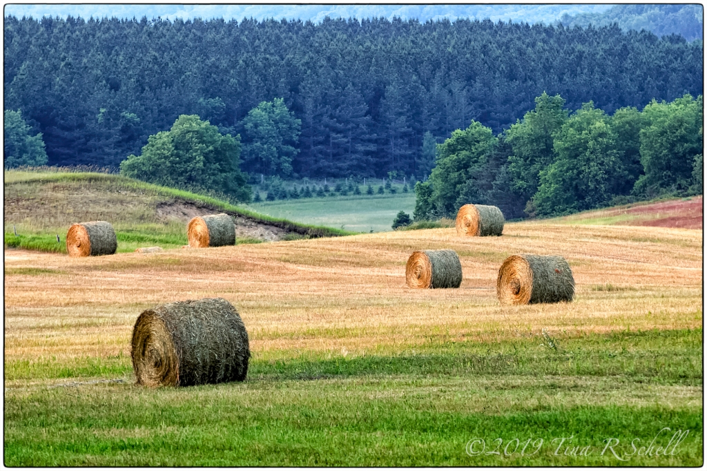 Rolling hills, hay bales