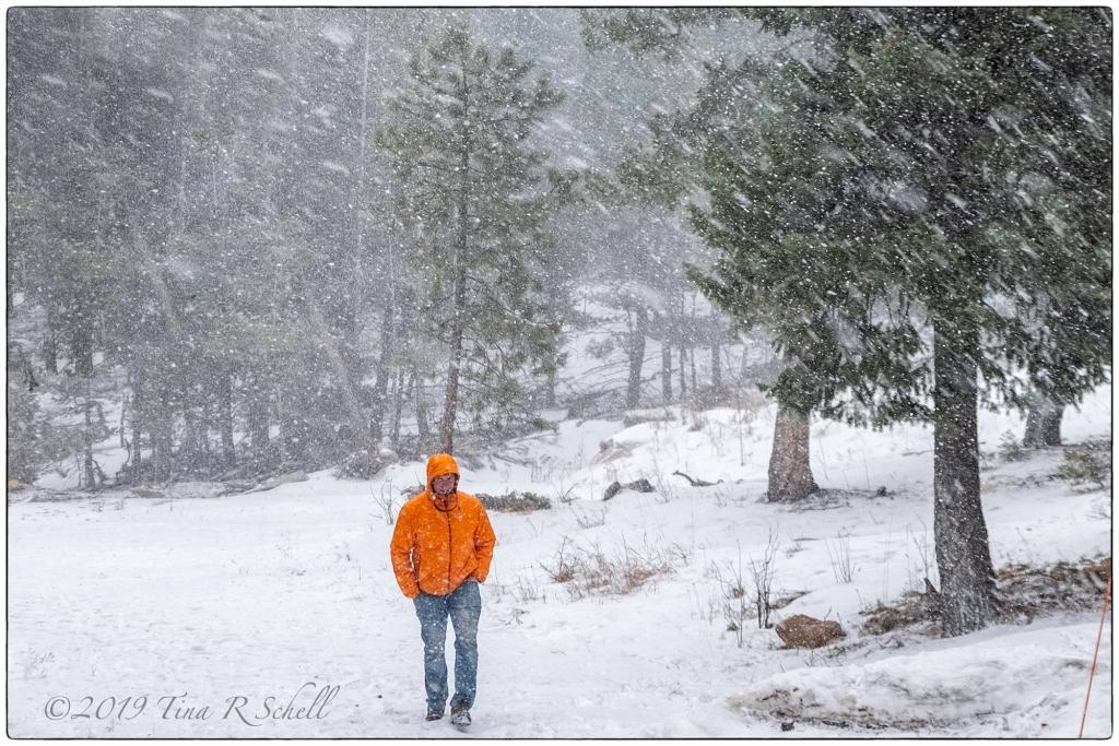 orang jacket, snowstorm