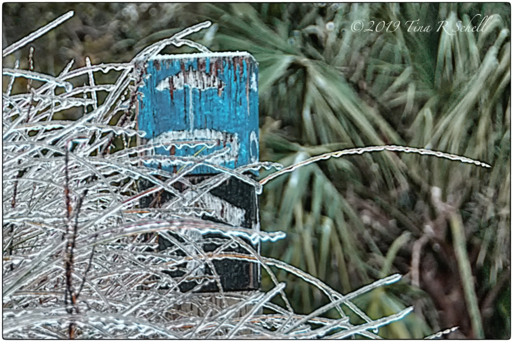 icicles on beach sign, Kiawah Island