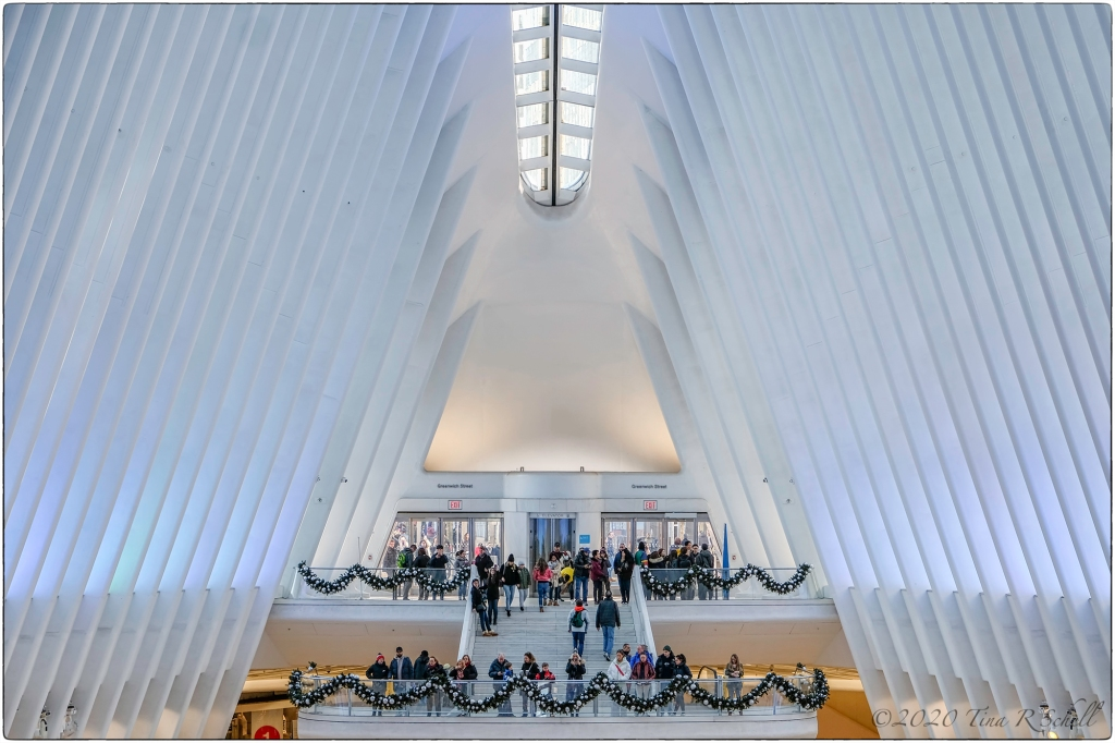 CALATRAVA AT CHRISTMAS
