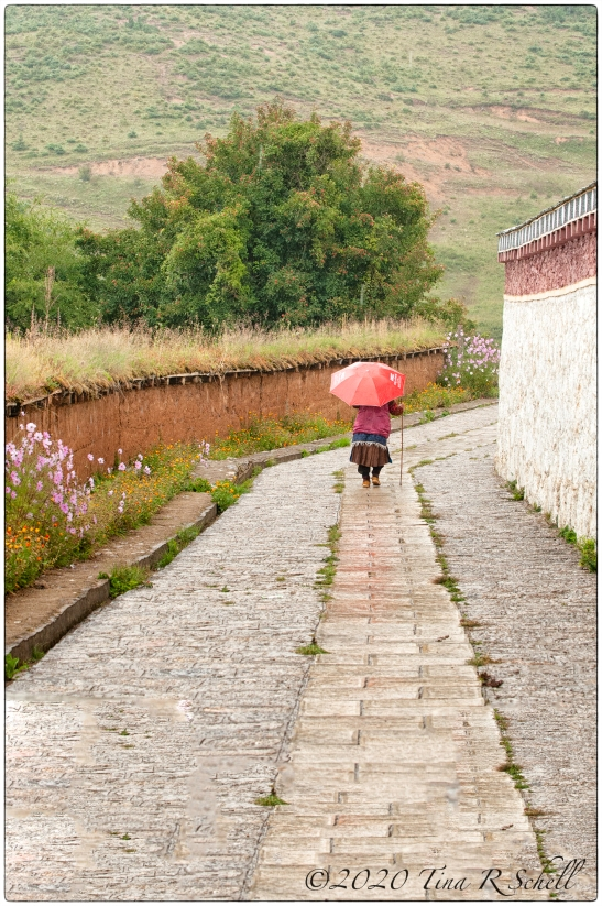 path, red, umbrella