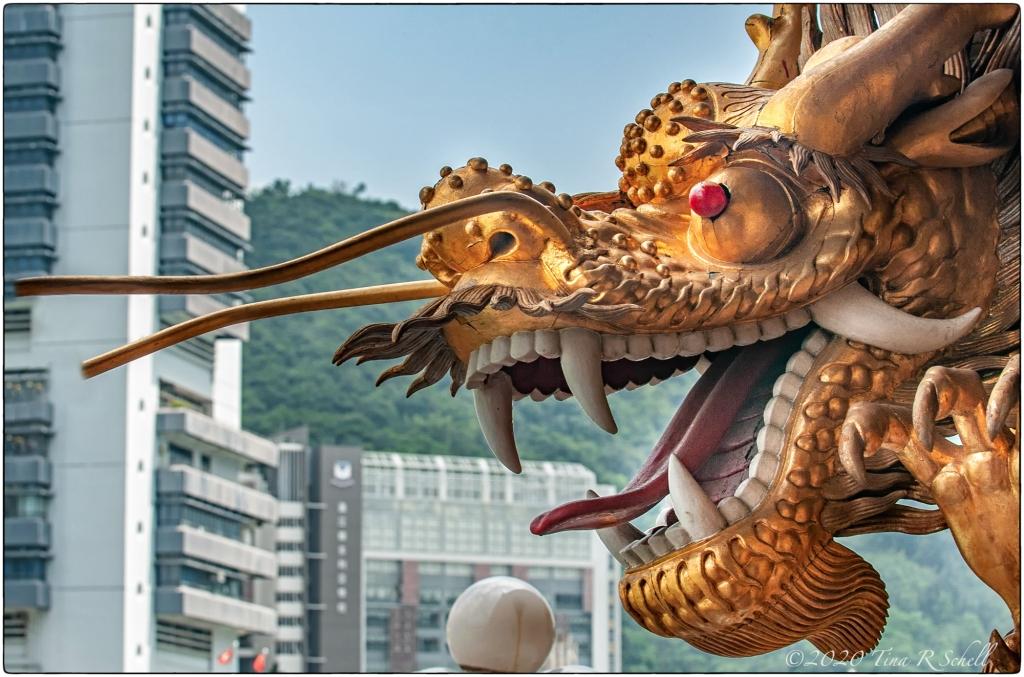 Gold, dragon, hong kong