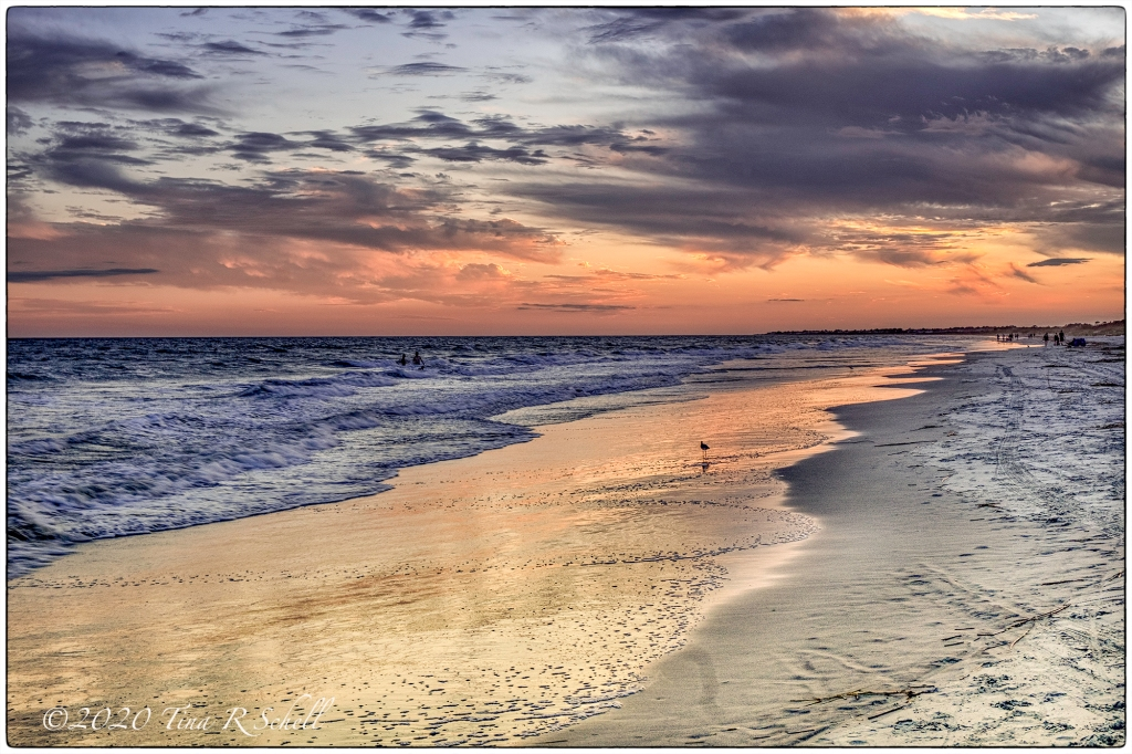 KIAWAH ISLAND, BEACH, SUNSET, BIRD