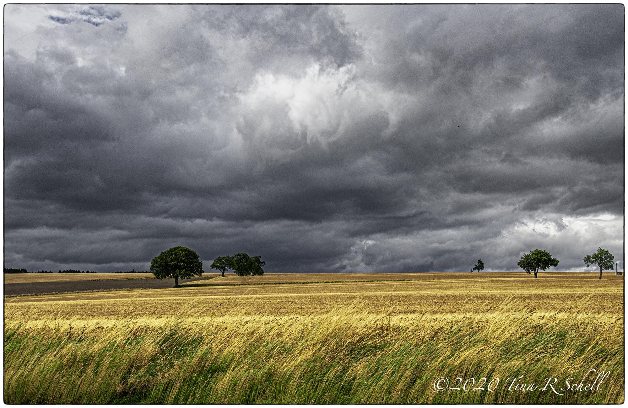 storm clouds, golden light, scotland