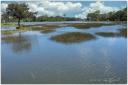 King Tide, Kiawah Island