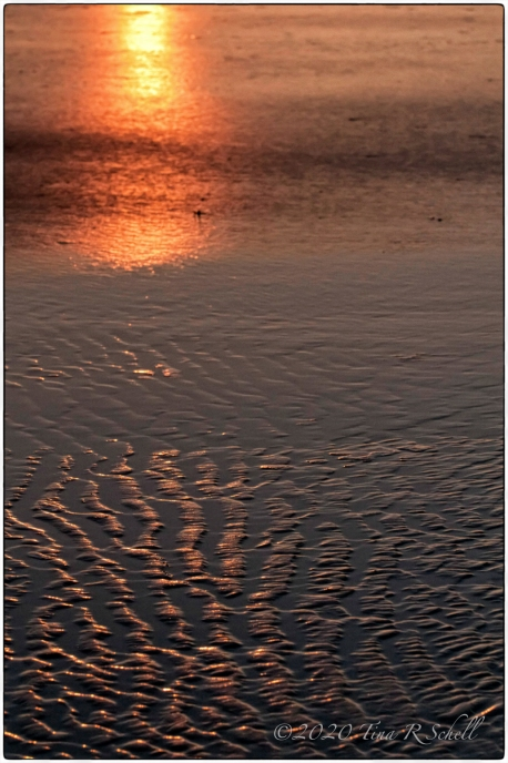 Beach, REFLECTING SUN, KIAWAH ISLAND