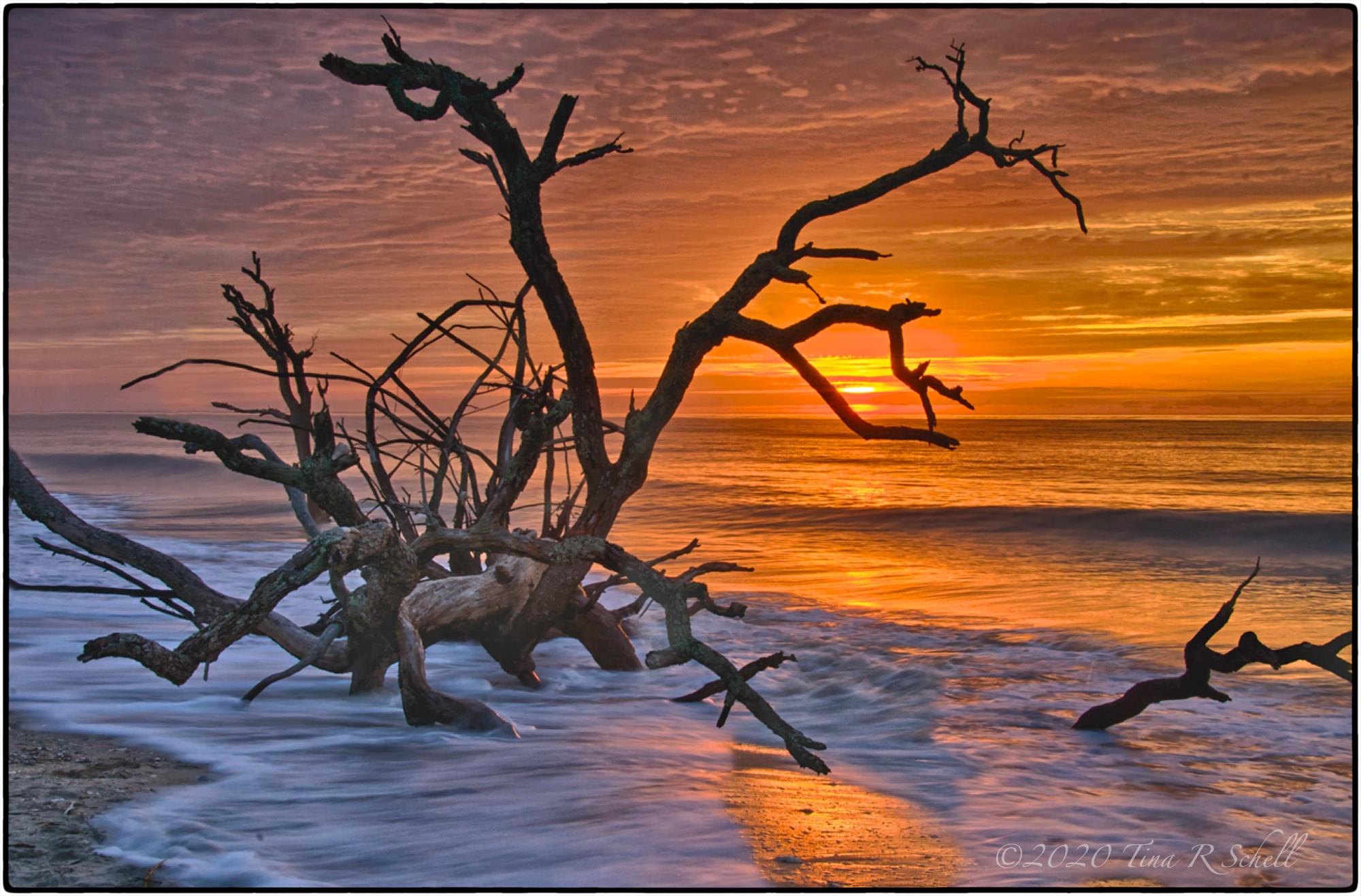 SUNRISE, BOTANY BAY SC