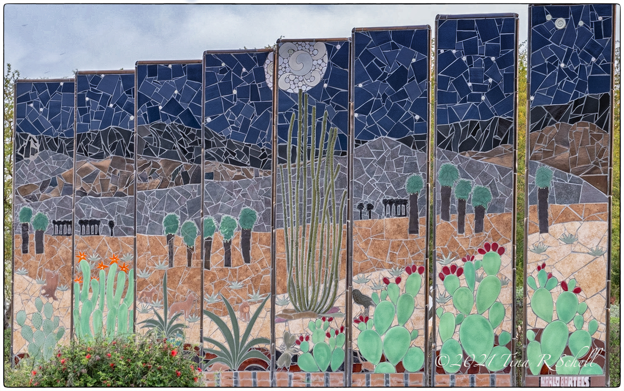 arizona, cacti, art