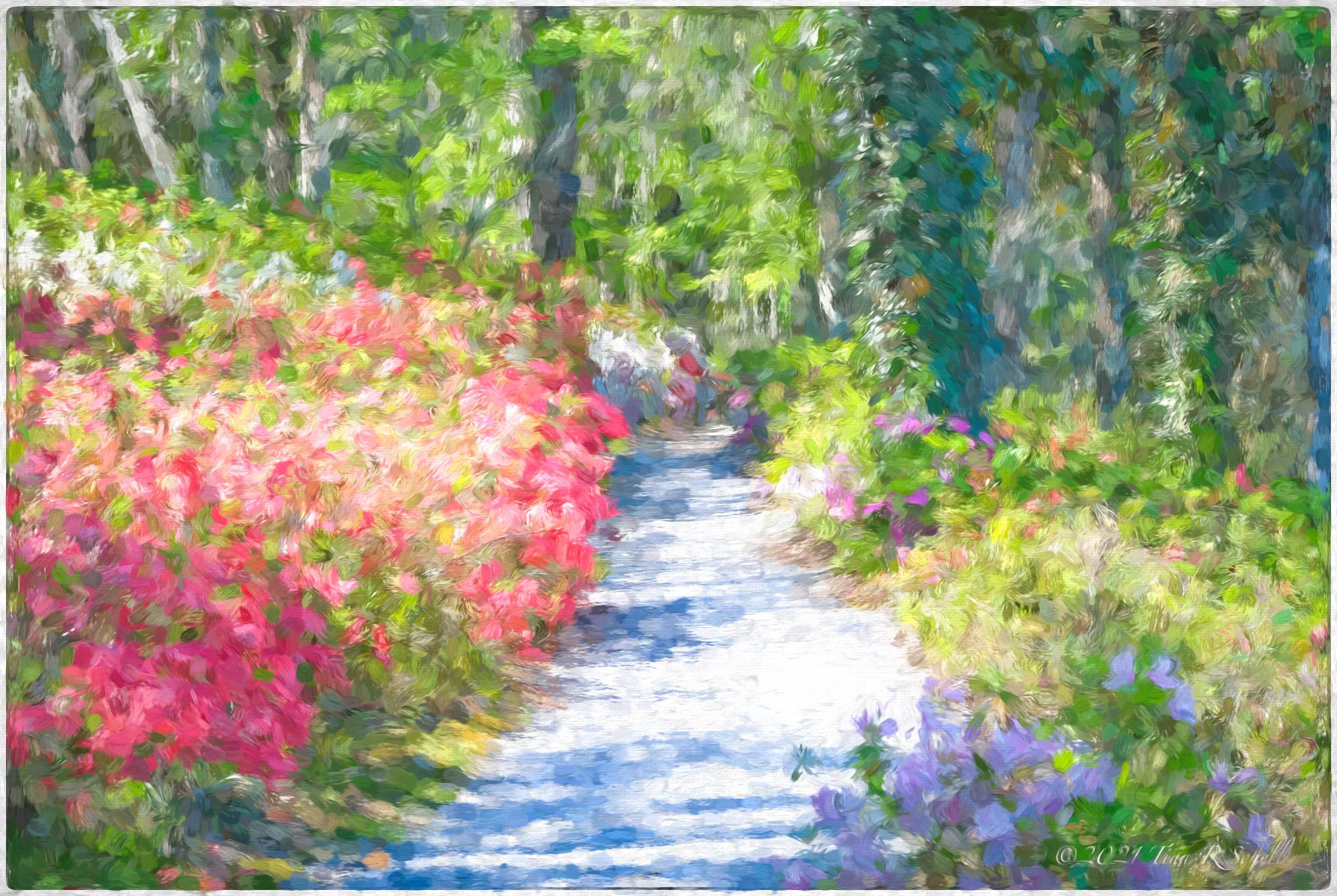 garden, path, impression