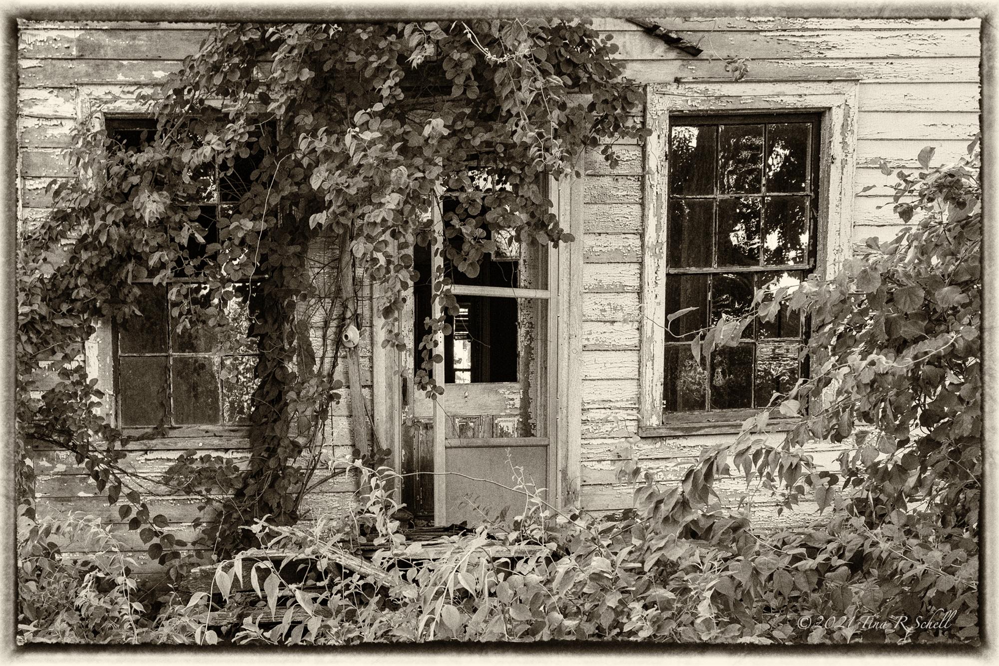 dilapidated, house, worn
